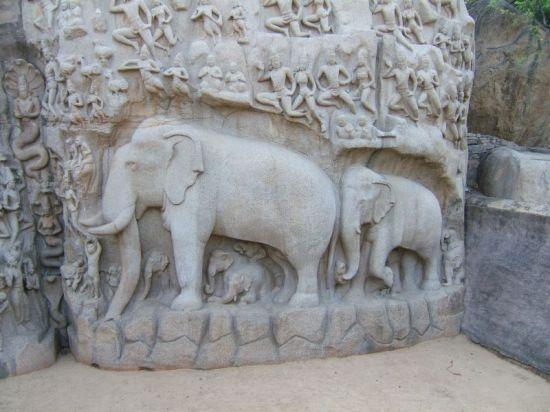 Gangawatarana Mahabalipuram slonie